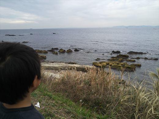 富津市の海で釣り (5)