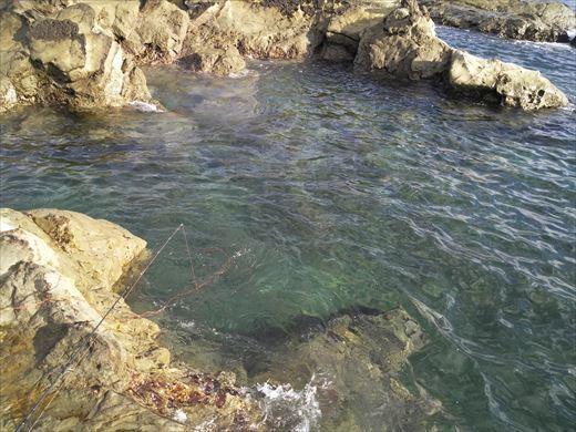 富津市の海で釣り (18)