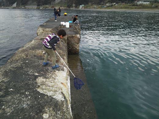 富津市の海で釣り (26)
