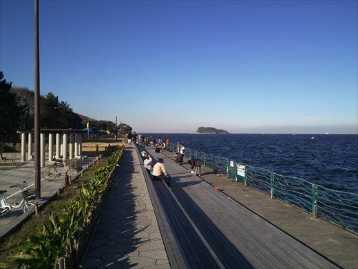 横須賀市海辺つり公園 (9)