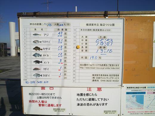 横須賀市海辺つり公園 (10)