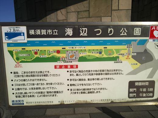 横須賀市海辺つり公園 (11)