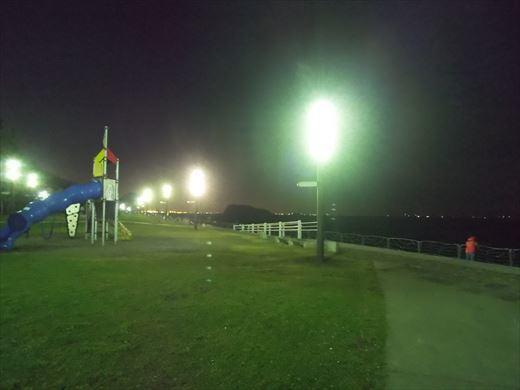 横須賀市海辺つり公園 (21)
