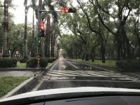 雨の仁愛路171212