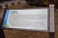 九龍寶石171230