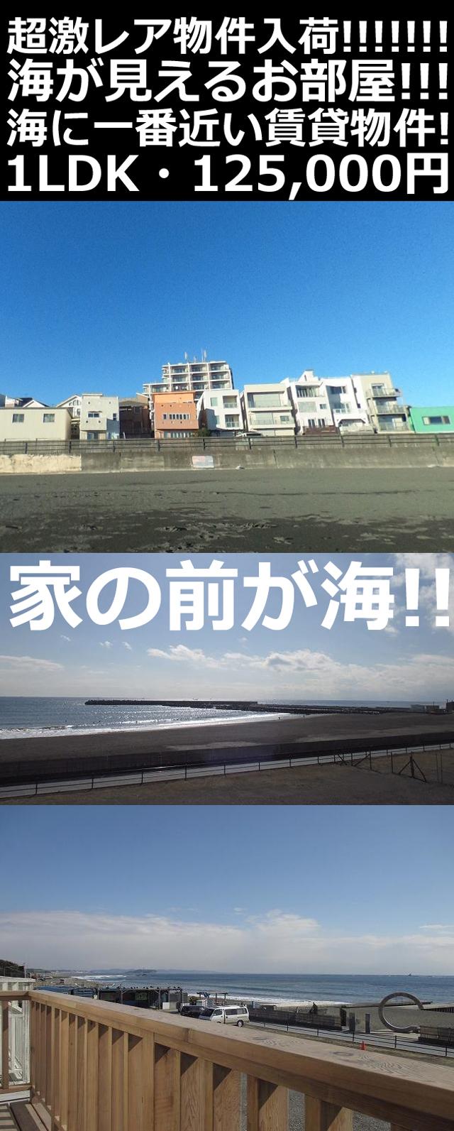 ■物件番号5071 超激レア物件!お部屋の前が海!海に一番近い!部屋から波チェック!ペット相談可!