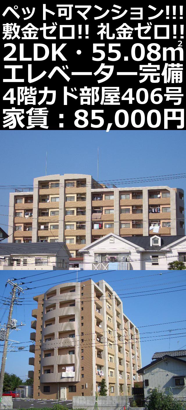 ■物件番号P5079 ★ペット可!2LDKマンション!4階カド!買い物便利なエリア!契約金が安い!