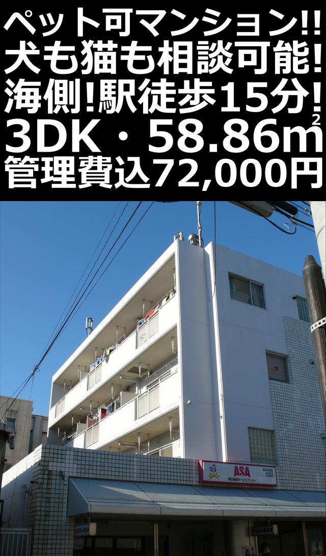 ■物件番号P5183 ペット可3DKマンション!!ネコも可!南向き3階!駅も海も歩ける!格安7.2万円!