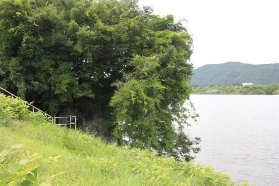 阿武隈川沿いの田沢磨崖へ