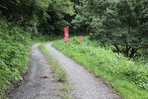 林道から滝沢観音へ