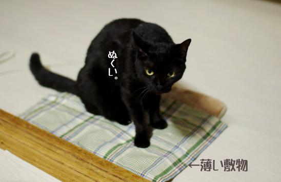 きたよ^-亜sクーコピー