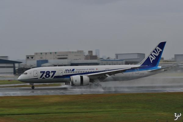 ZTEZ9460-SP-1000.jpg