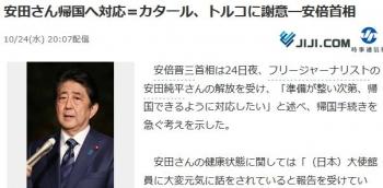 news安田さん帰国へ対応=カタール、トルコに謝意―安倍首相