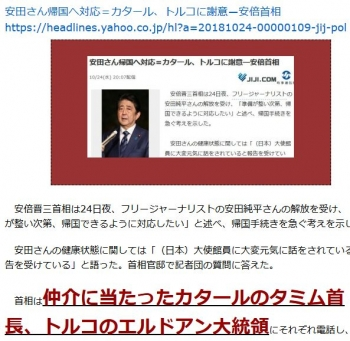ten安田さん帰国へ対応=カタール、トルコに謝意―安倍首相