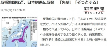 news反捕鯨国など、日本脱退に反発 「失望」「ぞっとする」