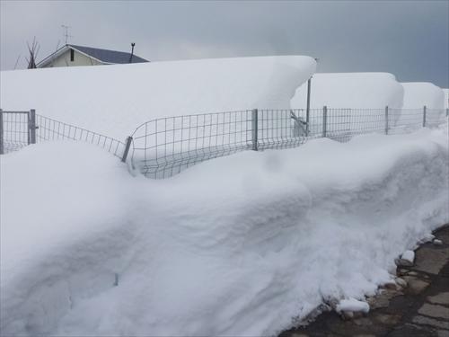 積雪パネル