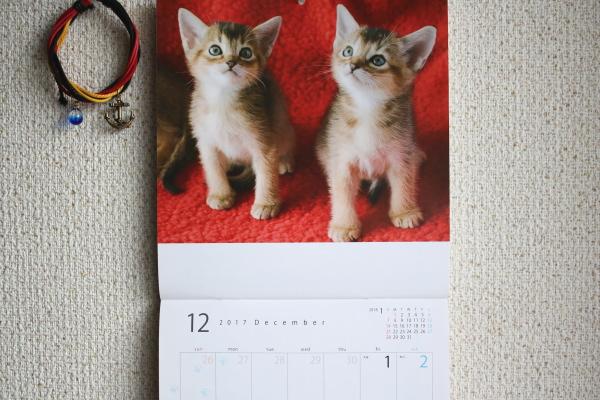 カレンダーが可憐だ