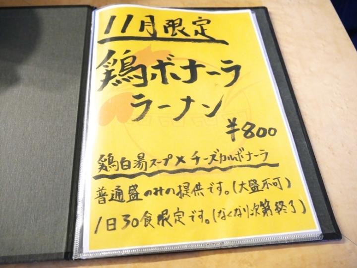 P1130495.jpg