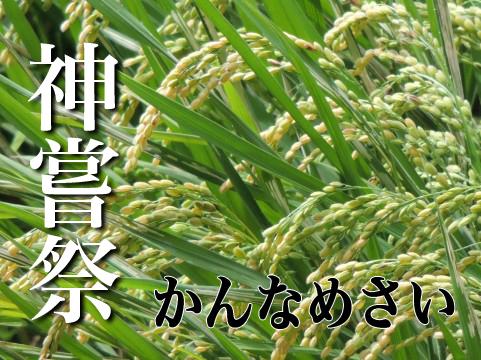 kannamesai004892.jpg