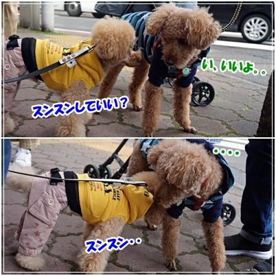 ムッちゃん&ライチ