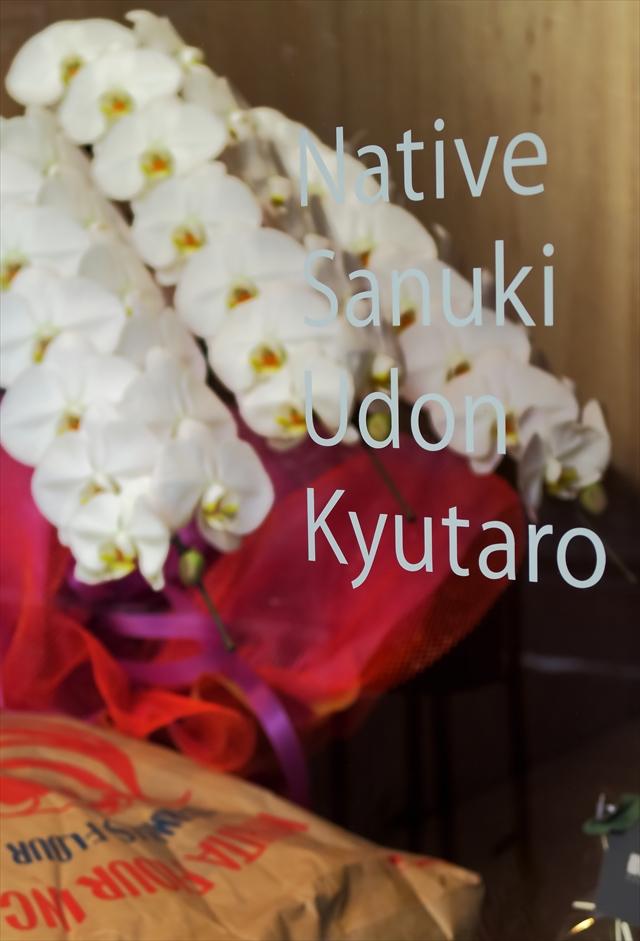 1701001-Udon Kyutaro-002-S