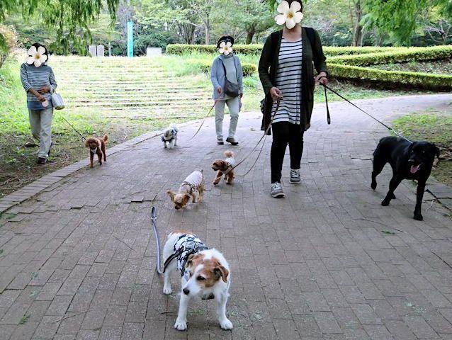 2017長岡公園478