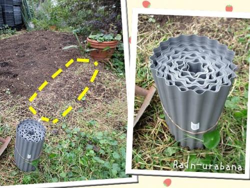 ココにイチゴを植えるのだ!