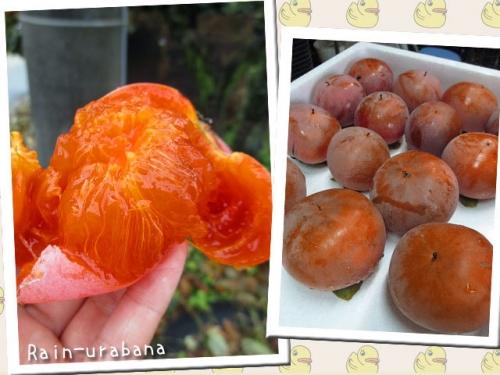 完熟柿...美味い (^ ^)