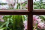 気になることは、潜在意識、阿頼耶識の窓を通して見れば大丈夫。