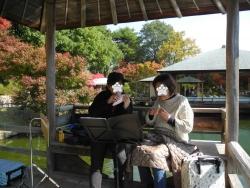 三景園20171105-4