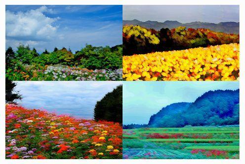 ③花のある風景