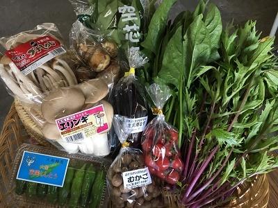 10月野菜セット