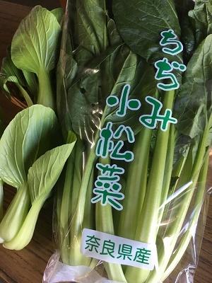 ちぢみ小松菜 ミニチンゲン菜