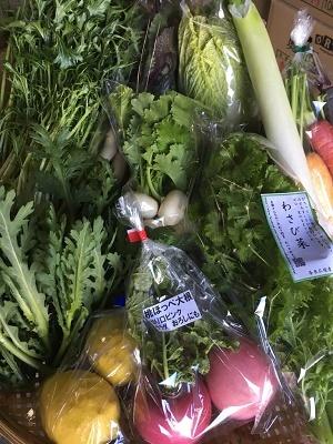 1月野菜セット⑤