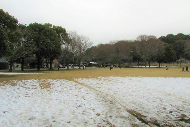 minuma180204-113.jpg