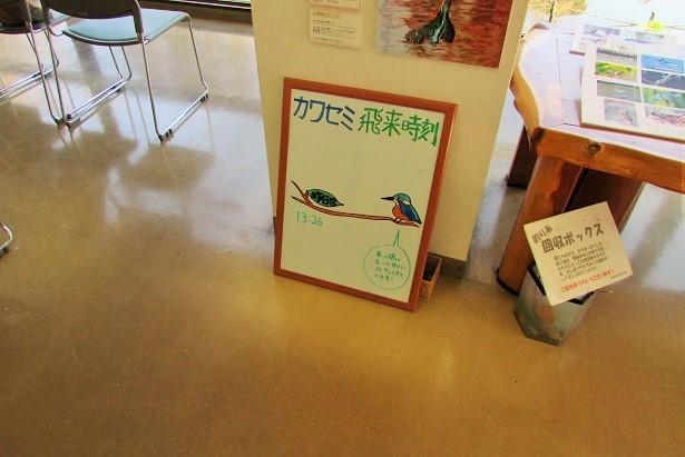 mizumoto180127-108.jpg