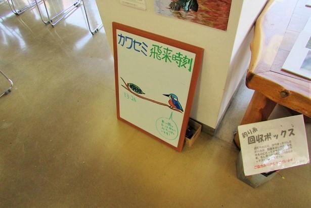 mizumoto180127-142.jpg