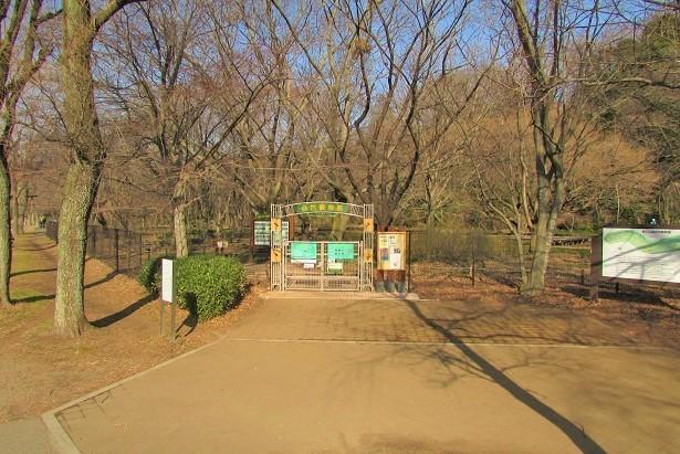 nogawa180121-107.jpg