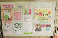 oomiya-daini180120-201.jpg