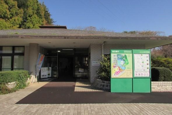 tukuba-shokubutu171103-105.jpg