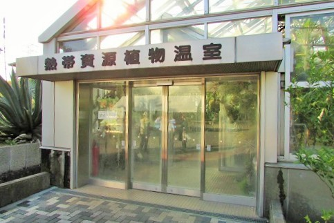 tukuba-shokubutu171103-150.jpg
