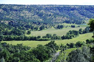 blog 43 Auburn to Weeds on 5N, Mt. Lassen 134E, Hay Field, CA_DSC0073-4.25.16.(2).jpg