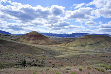 blog 47 Prineville, John Day Fossil Bed NM, OR_DSC0508-4.30.16.(2).jpg
