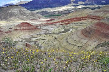 blog 47 Prineville, John Day Fossil Bed NM, OR_DSC0505-4.30.16.(2).jpg