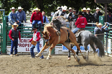 blog (6x4@300) 88 Rowell Ranch Rodeo, Saddle Bronco 16, Ryder Wright RR (NS