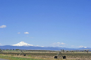 blog 49 Mt. Hood, 26W-97S from Prineville to Culver City, OR_DSC0655-5.2.16.(1).jpg