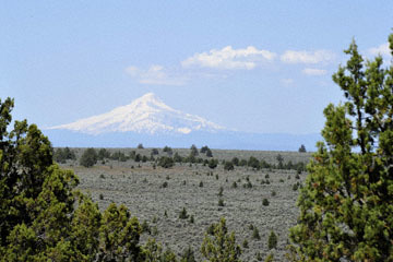 blog 49 Rimrock Springs Trail, Crooked River National Grassland, Mt. Hood ?, Madras, 26W-97S from Prineville to Culver City, OR_DSC0720-5.02.16.(1).jpg