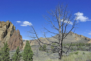 blog 50 Smith Rock State Park (26E-Lone Pine Road), OR_DSC0750-5.02.16.(2).jpg