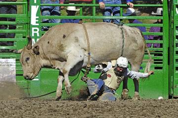 blog (6x4@300) Yoko 76 Livermore, Bull Riding 11, Brady Williams (NS LaGrange, CA)_DSC8137-6.10.17.(3).jpg