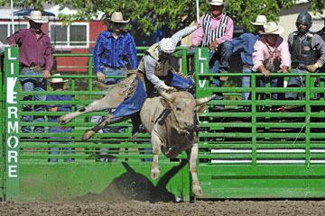 blog (6x4@300) Yoko 76 Livermore, Bull Riding 11, Brady Williams (NS LaGrange, CA)_DSC8126-6.10.17.(3).jpg